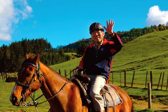 Rotorua Horse Trek - Cody's Trek